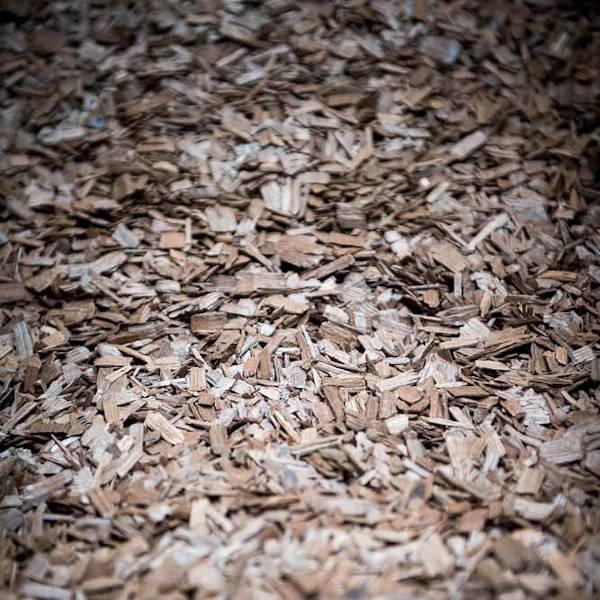 Grain de riz
